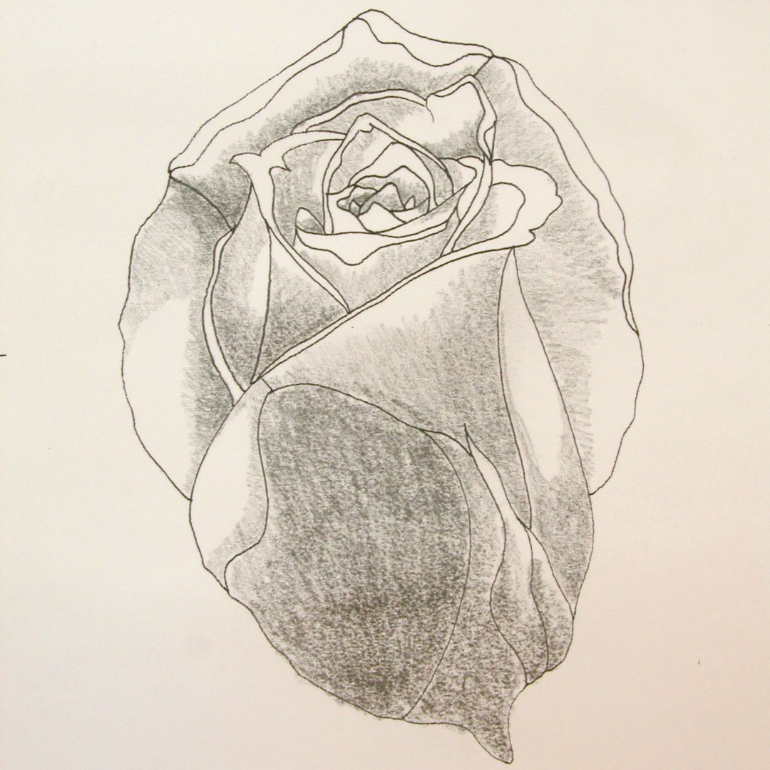 Ombrage-Rose