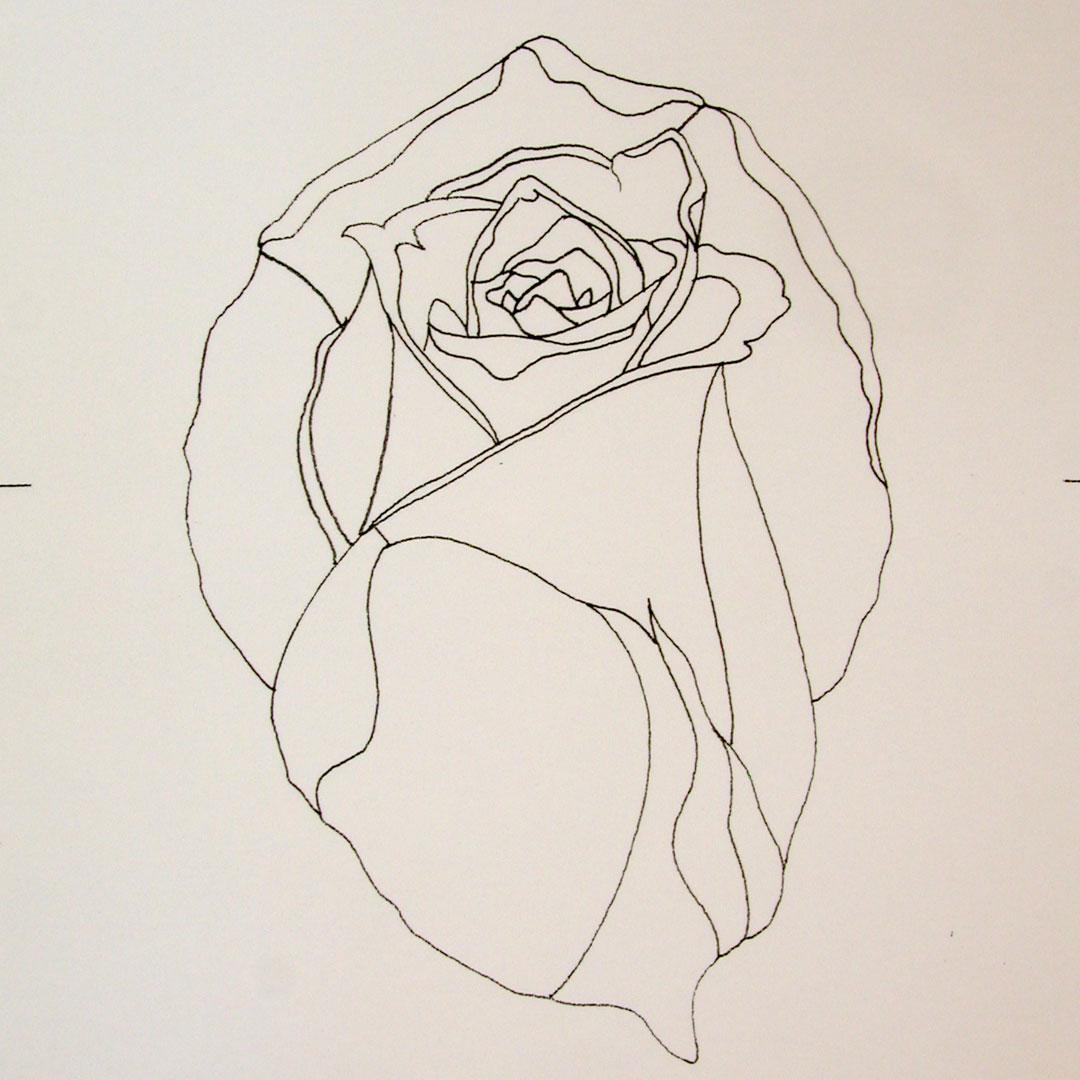 Tracé Rose